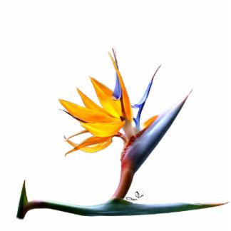 Escultura de la foto de la ave del paraíso escultura fotográfica