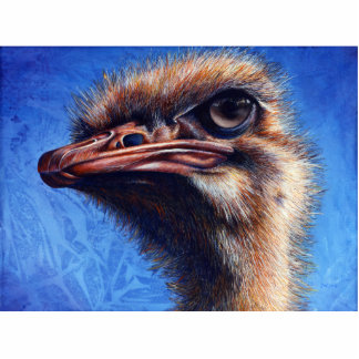 Escultura de la foto de la avestruz de Fugley Pin Fotoescultura