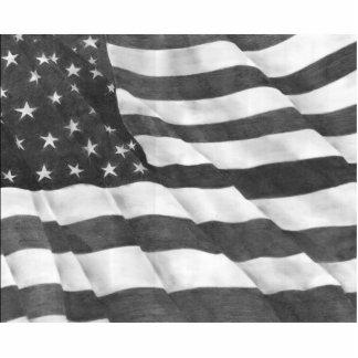 Escultura de la foto de la bandera americana escultura fotografica