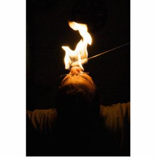 Escultura de la foto del comedor de fuego fotoescultura vertical