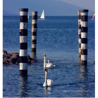 Escultura de la foto del lago swan fotoescultura vertical