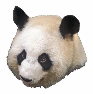 Escultura de la foto del oso de panda esculturas fotograficas