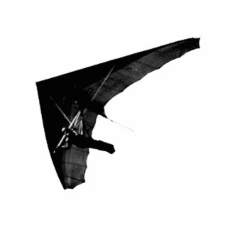 Escultura de la foto del planeador de caída fotoescultura vertical