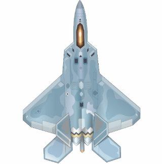 Escultura de la foto del rapaz F-22 Escultura Fotográfica