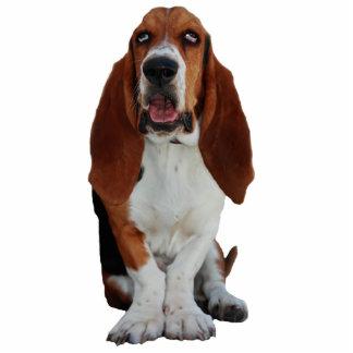 Escultura de la foto del retrato del perro de Bass Fotoescultura Vertical