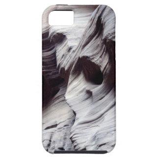 Escultura de la naturaleza iPhone 5 funda