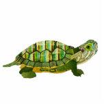 Escultura de la tortuga del jade esculturas fotograficas