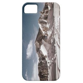 Escultura de nieve del oso polar funda para iPhone SE/5/5s