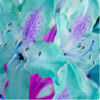 Escultura floral azul de la foto esculturas fotográficas