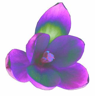 Escultura mística de la foto de la flor del azafrá escultura fotográfica