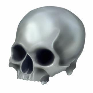 Escultura pintada de la foto del cráneo escultura fotografica