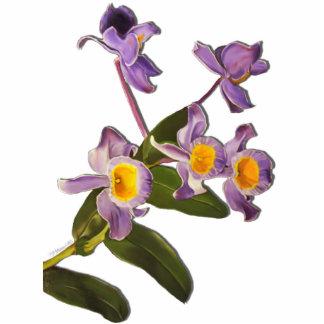 Escultura púrpura de las orquídeas esculturas fotograficas