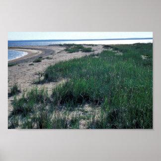 Escupitajo de la arena de la isla de Chamisso Impresiones