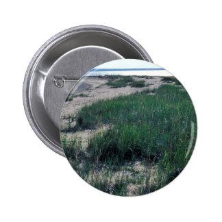 Escupitajo de la arena de la isla de Chamisso Pin
