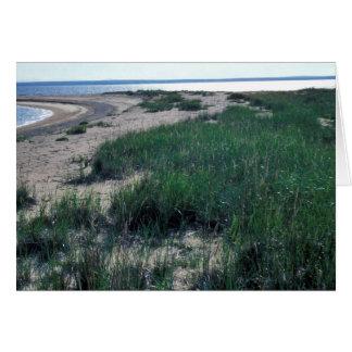 Escupitajo de la arena de la isla de Chamisso Tarjetas
