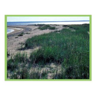 Escupitajo de la arena de la isla de Chamisso Postal