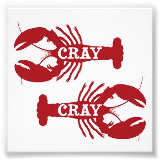 Ese cangrejo de Cray Cray crustáceo Impresion Fotografica