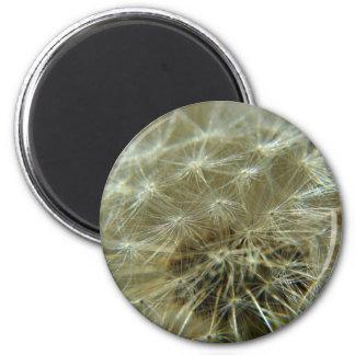 Esfera mullida - imán