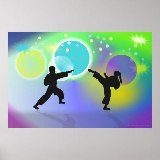 Esferas del poster de los artes marciales póster