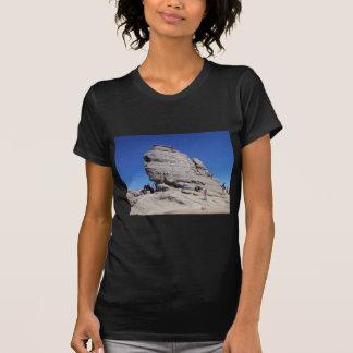 Esfinge de Bucegi Mts, megalito fresco de Rumania Camisas
