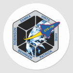 Esfuerzo del STS 130 Pegatinas Redondas