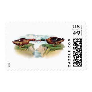 Esfuerzo supremo del pato silvestre timbres postales