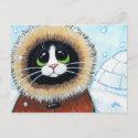 Eskimo Cat and Igloo   Animal Art Postcard