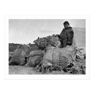 Eskimo Fur Dealer in Nome, Alaska Photograph Postcard