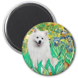 Eskimo Spitz 1 - Irises 2 Inch Round Magnet