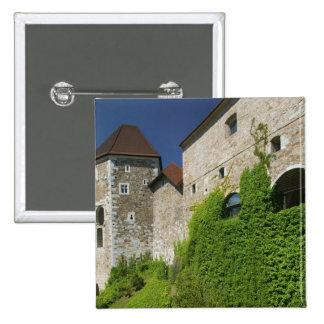 ESLOVENIA, Ljubljana: Colina/Ljubljana del castill Pin Cuadrado