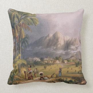 Esmeralda, en el Orinoco, sitio de un Missi Cojín