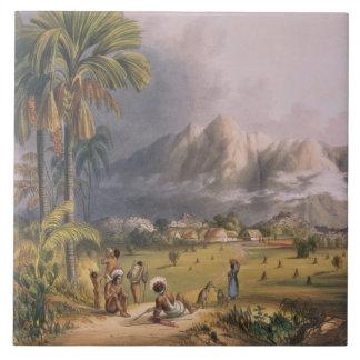 Esmeralda, en el Orinoco, sitio de un Missi españo Azulejo Cuadrado Grande