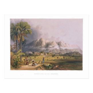 Esmeralda, on the Orinoco, site of a Spanish Missi Postcard