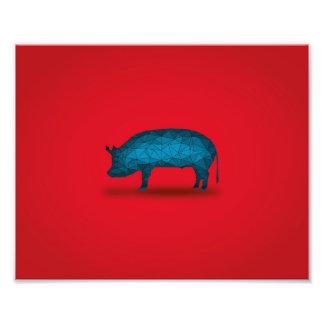 Eso hará el cerdo… fotografías