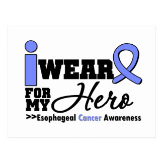 Esophageal Cancer Periwinkle Ribbon For My Hero Post Card