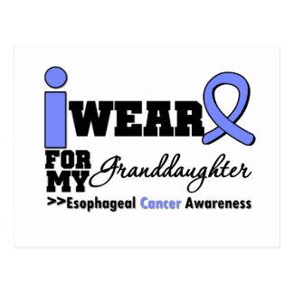 Esophageal Cancer Periwinkle Ribbon Granddaughter Postcard