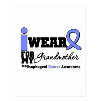 Esophageal Cancer Periwinkle Ribbon Grandmother Postcards