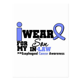 Esophageal Cancer Periwinkle Ribbon My Son-in-Law Post Cards