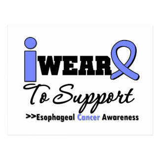 Esophageal Cancer Periwinkle Ribbon Support Post Card