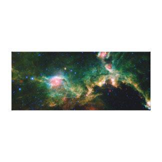 Espacio de la NASA de la nebulosa de la gaviota Lona Envuelta Para Galerías
