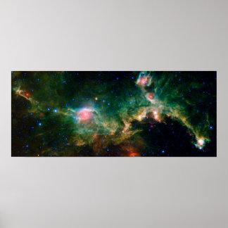 Espacio de la NASA de la nebulosa de la gaviota Poster