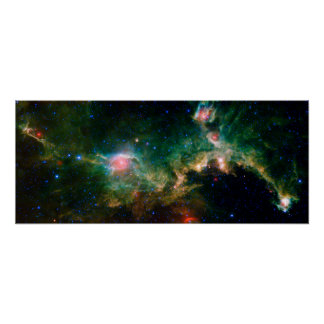 Espacio de la NASA de la nebulosa de la gaviota Póster