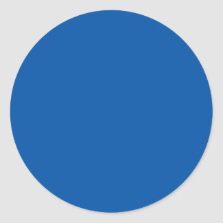 Espacio en blanco adaptable azul de bronce de la pegatinas redondas