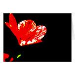 Espacio en blanco anaranjado Notecards de la fanfa Felicitacion