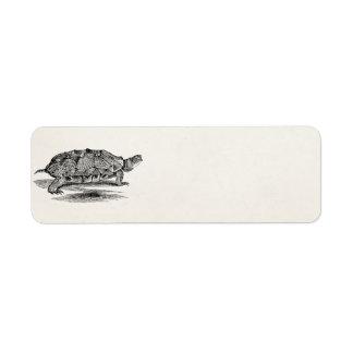 Espacio en blanco de madera de la plantilla de la etiqueta de remitente