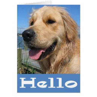 Espacio en blanco del perro de perrito del golden tarjeta pequeña