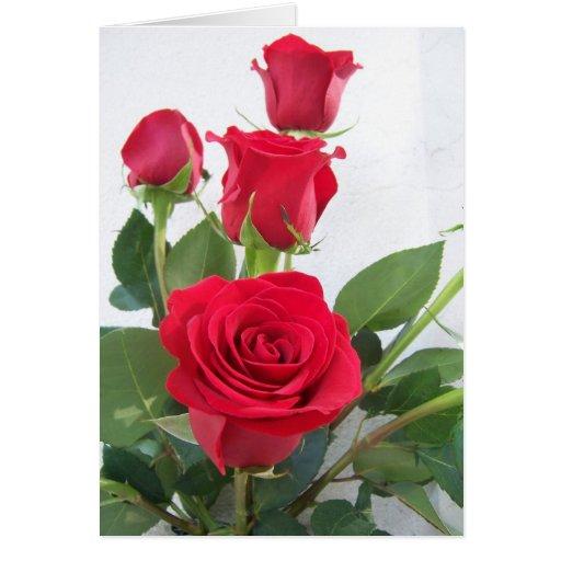 Espacio en blanco del rosa rojo tarjeta de felicitación