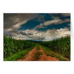 Espacio en blanco Notecard del campo de maíz del v