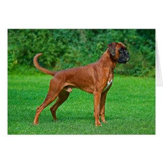 Espacio en blanco Notecard del perro de perrito Tarjeta Pequeña