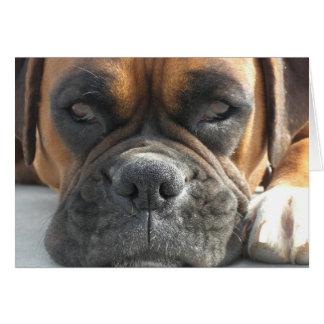 Espacio en blanco Notecard del perro del boxeador Tarjeta Pequeña